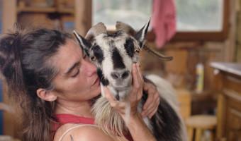 Letizia Giuntini : Une femme contre le désastre /un film documentaire de Jean Froment