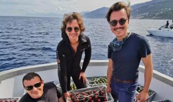 Des vins corses en immersion pour soutenir un projet environnemental !