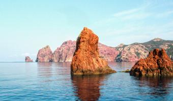 Une Réserve Naturelle Marine Et Terrestre Du Nord-Ouest De La Méditerranée, Scandula (Corse) : Biodiversité Et Leçons De 46 Années De Gestion