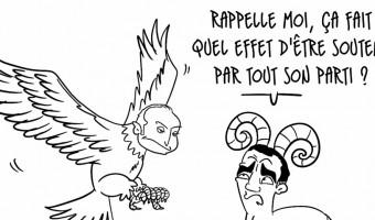Territoriales : entre l'Aigle et le Mouflon , la Victoire hésite ...
