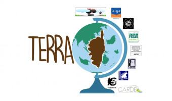 Un appel de la coordination Terra