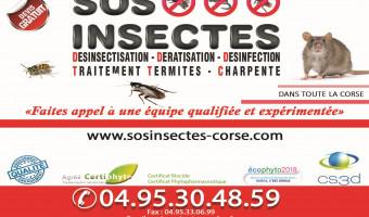 SOS INSECTES le spécialiste de la désinsectisation