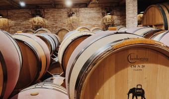 Du vin aux maisons d'hôtes, la magie Saparale