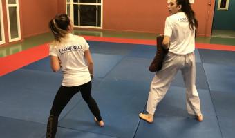 Taekwondo : en visio avec le grand maitre Park Moon Soo